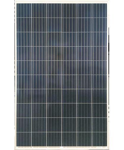 Солнечная панель RSM60-6-280P 5BB Risen